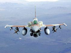 lockheed f-16 fighting falcon | Planta Do Lockheed Martin F-16 Fighting Falcon Gigante Giant