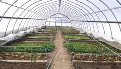 Looking to build a greenhouse? Here's a great article about Site Selection from Rodale Institute