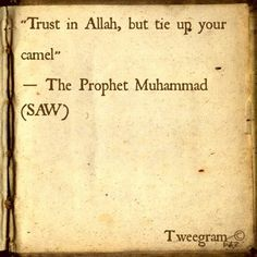 trust in ALLAH but also use your common sense which ALLAH has bestowed upon you. Sponsor a poor child learn Quran with $10, go to FundRaising http://www.ummaland.com/s/hpnd2z