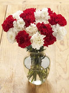red and white carnation wedding bouquets Carnation Wedding Bouquet, Carnation Centerpieces, Flower Girl Bouquet, Red Carnation, Carnations, Wedding Centerpieces, Wedding Bouquets, Wedding Flowers, Wedding Decoration