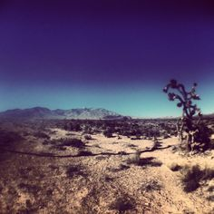 iPhone photography | The Mojave Desert: Las Vegas, NV