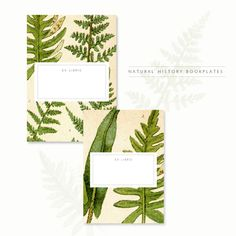 Besotted: Natural History Bookplates  also free photoshop brushes etc, check them out =)