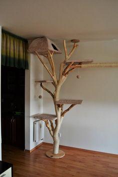 Rolnika BAGY CAT sro cattree catwoman bagy cat cattree catw – Pets and Supplies Cat Tree House, Diy Cat Tree, Cat Towers, Cat Shelves, Cat Playground, Cat Enclosure, Cat Room, Cat Condo, Pet Furniture