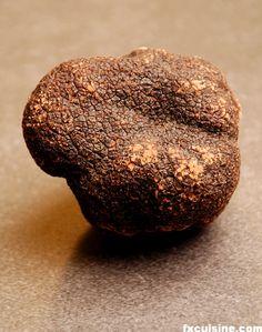 THE Italian Black Truffle.