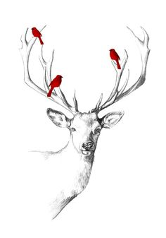 A small series of illustrations I created to be sold as Christmas cards.The original illustration was created with pencil and digital colouring.The cards have been digitally printed on quality textured paper and come with a metallic bright red env… Deer Drawing, Painting & Drawing, Deer Illustration, Illustrations, Cervo Tattoo, Animal Drawings, Art Drawings, Deer Art, Art Design