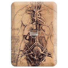 Da Vinci - Principle Organs Phone Wallplate