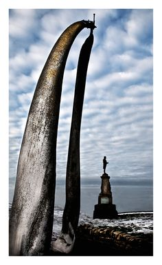 Whitby Whale Bones Winning Photograph BIPPNE Open Category 2011