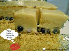 Running away? I'll help you pack.: Blueberry Cheesecake Fudge