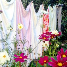 wildflowers in foreground Laundry Art, Laundry Lines, Laundry Drying, Doing Laundry, Laundry Room, Cosmos Flowers, Wild Flowers, Country Farm, Country Life
