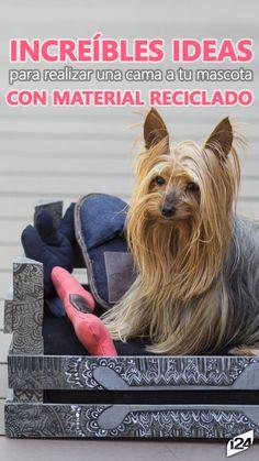 Tu mascota adorará estas ideas #Camas #reciclaje #Mascotas #ideas #Decoración #PiensaVerde