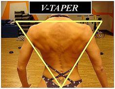 Figure Posing - Back Pose - V Taper