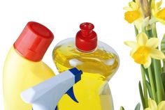Professional Spring Cleaning Services #piedmonthhousecleaning