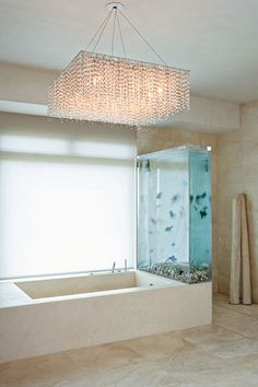 Tub and aquarium