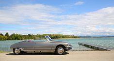 Meet the cream of Bonhams' Chantilly Arts & Elegance crop Bmw 507, 427 Cobra, Goodwood Revival, Citroen Ds, Maserati, Meet, Elegant, Motors, Magazine