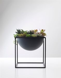 Kubus Bowl.  make outside box out of wood (ebony stain) with a copper inlayed bowl with succulents