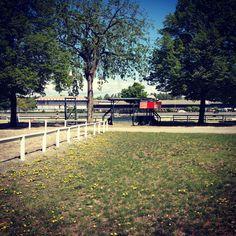 Saratoga Springs NY racetrack