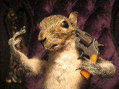 Third Floor---Taxidermy Suicide FTW Squirrel Shooting Itself