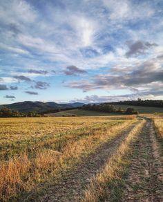 """756 kedvelés, 3 hozzászólás – ilovedunakanyar.hu Ⓒ (@ilovedunakanyar) Instagram-hozzászólása: """"Ti mit terveztek hétvégére? 🤷♀️ Mi a Börzsönybe tervezünk egy rövid kirándulást,…"""" Country Roads, Instagram"""