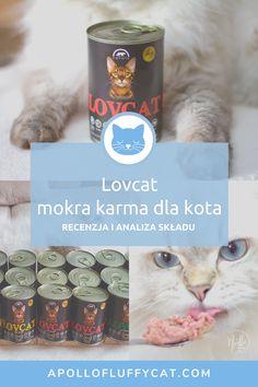 Lubimy testować nowości pojawiające się na polskim rynku, a szczególnie mokre karmy dla kotów z wysoką zawartością mięsa. Karma LOVCAT jest właśnie taką karmą. Jak wypadła w naszych testach? Apollo, Karma, Blog, Blogging, Apollo Program