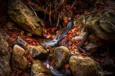 #nikon #nikonphotography #nikond810 #landscape #landscapephotography #photoofday #photography #photo #mdnoga #longexposure #longexposurephotograph #nature #photographyislife #photoshoot #photooftheday #maryland #autumn #baltimore #patapscostatepark