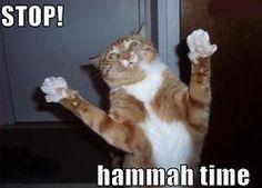 Stop! Hammah Time!