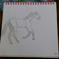 My attempt at drawing a Kiger Mustang. Criticism is welcome. Repin with credit. Drawn by Blaze Runner ( Blazeclaw, Alphaheart ).