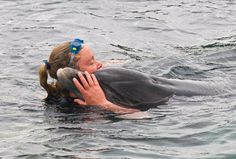 Ute Margref hugs Dusty the dolphin on her daily swim in County Clare, Ireland  (how I miss that dolphin!)