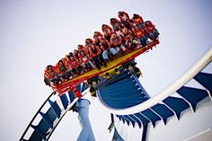 Griffon, Busch Gardens, Williamsburg, VA