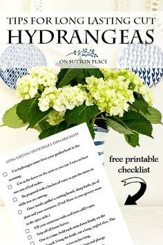 Long lasting cut hydrangea tips on a free printable checklist. Download and keep handy for wilt-free summer hydrangea arrangements!