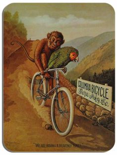 Columbia Bicycle Parrot & Monkey Mouse Mat Vintage Cycling Poster Bike Mouse pad | eBay