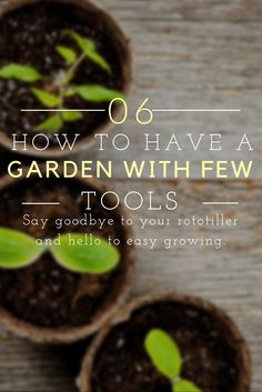 Garden with Few Tools