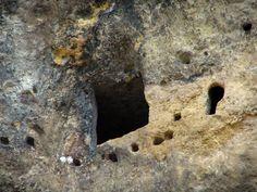 Les Eyzies-de-Tayac-Sireuil : Rock face, in Périgord - France-Voyage.com