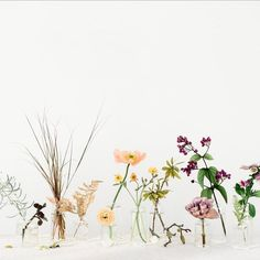 Proof that simplicity can be perfection! Vase Arrangements, Wedding Arrangements, Floral Centerpieces, Centrepieces, Wedding Vases, Floral Wedding, Wedding Flowers, Bud Vases, Flower Vases