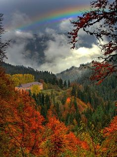 ✮ Rainbow above Fall Colors. The whole world is alive with color, vibrant during the season of change. As if the shockingly bright shades in the leaves were not enough, the sky too is rejoicing with a beautiful rainbow. This is nature at work. Beautiful World, Beautiful Places, Beautiful Pictures, Luz Solar, Dame Nature, Autumn Scenery, Fall Pictures, Amazing Nature, Belle Photo