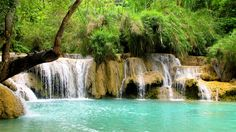 Can't believe I was just here less than two weeks ago! Fell in love with Laos! Kuang Si Falls