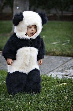 panda bear costume but add a bow and tutu for Hannah!