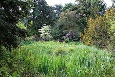 Borkrijks Arboretum