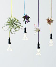 LIGHTING(ライティング)のプルーメン 001 / PLUMEN 001(照明)|詳細画像
