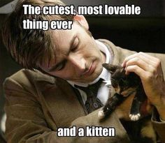 The cutest, most lovable thing ever...and a kitten.