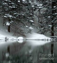 """""""Winter Reflections 004""""  by: © Michael Ray 25% discount on all pieces in my fine art gallery. See my home page for discount code. http://fineartamerica.com/profiles/3-michael-ray.html"""
