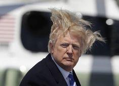 12 Photos Of Trump Boarding Air Force One On A Very Windy Day Donald Trump Hair, Iron Man Race, Ironman Triathlon, International Shopping, Windy Day, Hair Transplant, Air Force Ones, Hair Photo, Hair Art