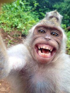 Znalezione obrazy dla zapytania Selfie