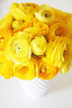 Aww ~ Yellow Roses ~ ~ ~
