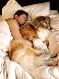 This is funny cause this is how Mortimer sleeps when he is in bed with me! The dog likes to spoon! haha