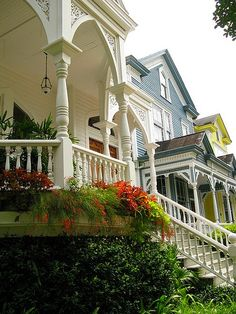 Beautiful row of Savannah homes