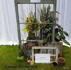 Guildwood Gardens...: Canada Blooms - flower designs and decorations - Blumen Design und Dekorationen