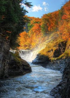 Autumn, lower falls, Letchworth State Park, New York. White foam of the waterfall makes an incredible contrast with the red hues of the autumn trees!