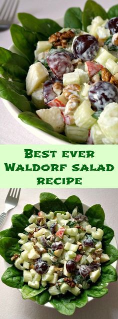 Best ever Waldorf salad recipe with a light yogurt and mayo dressing