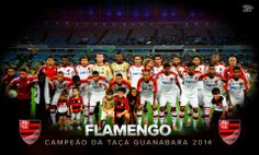 Campeão Taça Guanabara 2014