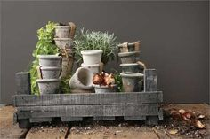 4 Round x 3-1/2H Clay Pot, Distressed Finish, 4 Styles, Holds 3 Pot (Each One Will Vary)